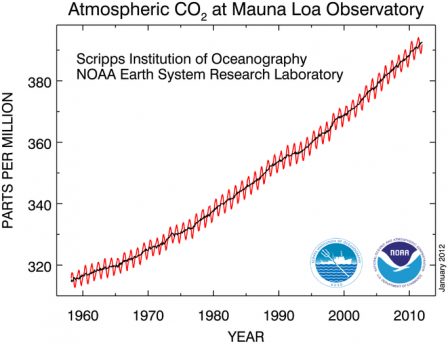 Graph showing increasing Atmospheric CO2 at Mauna Loa Observatory from the 1950's to 2010.